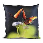 Pair of Queens 14in Throw Pillow