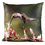 Pink Flower Hummingbird 14in Throw Pillow