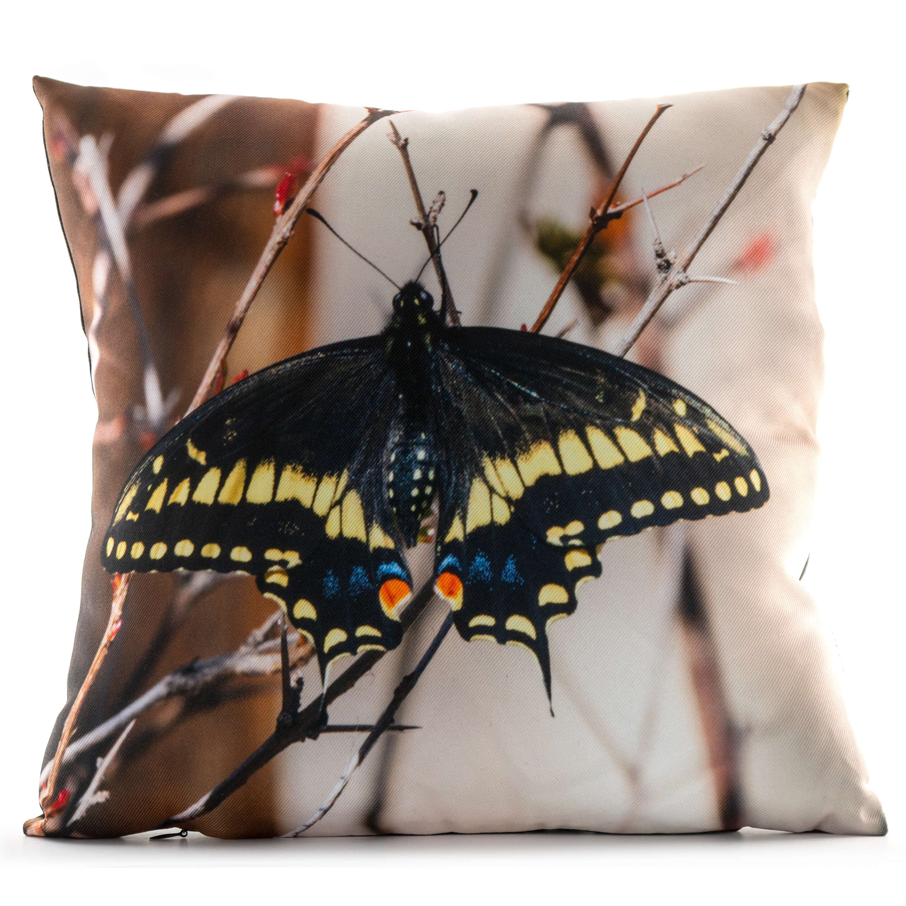 Black Swallowtail Butterfly 14in Throw Pillow