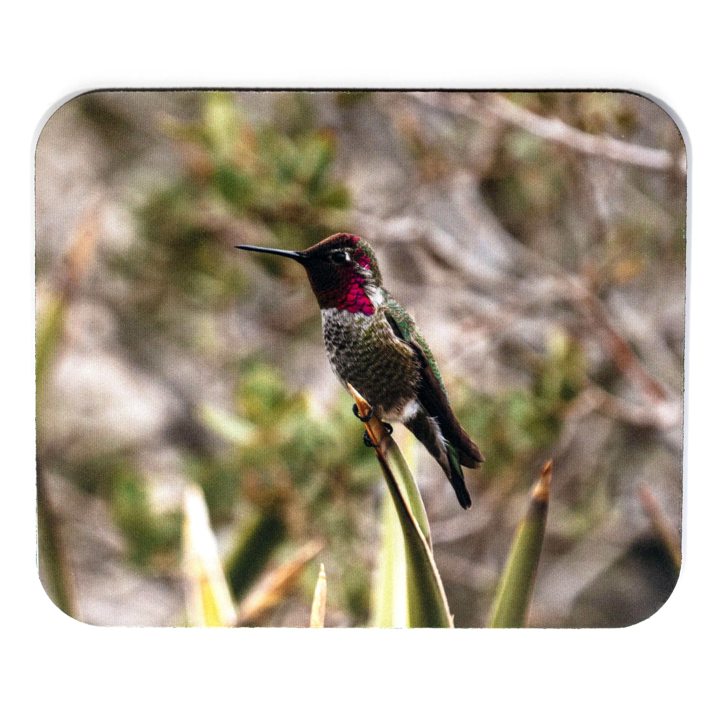 Iridescent Backyard Hummingbird Mousepad