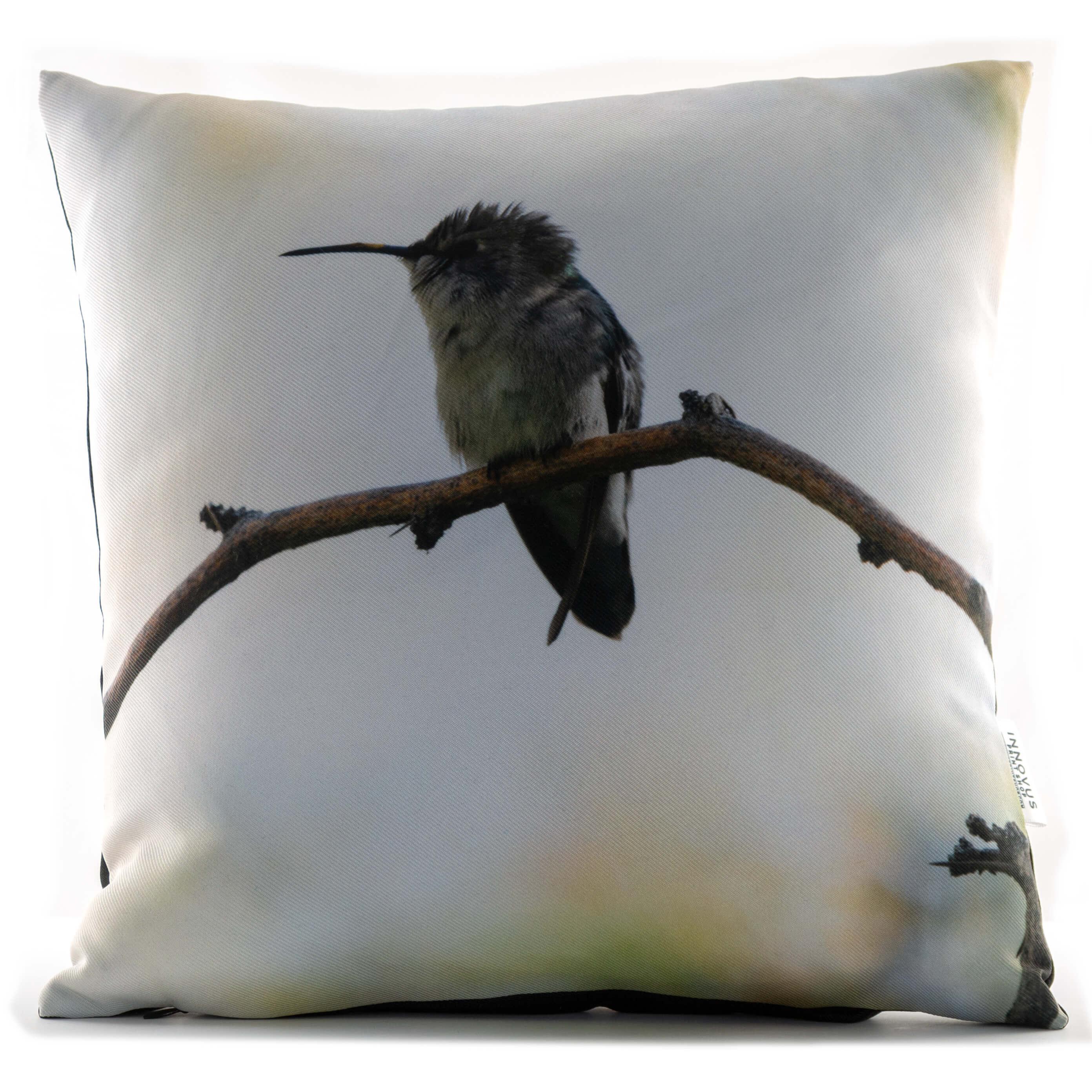 Juvenile Hummingbird 14in Throw Pillow