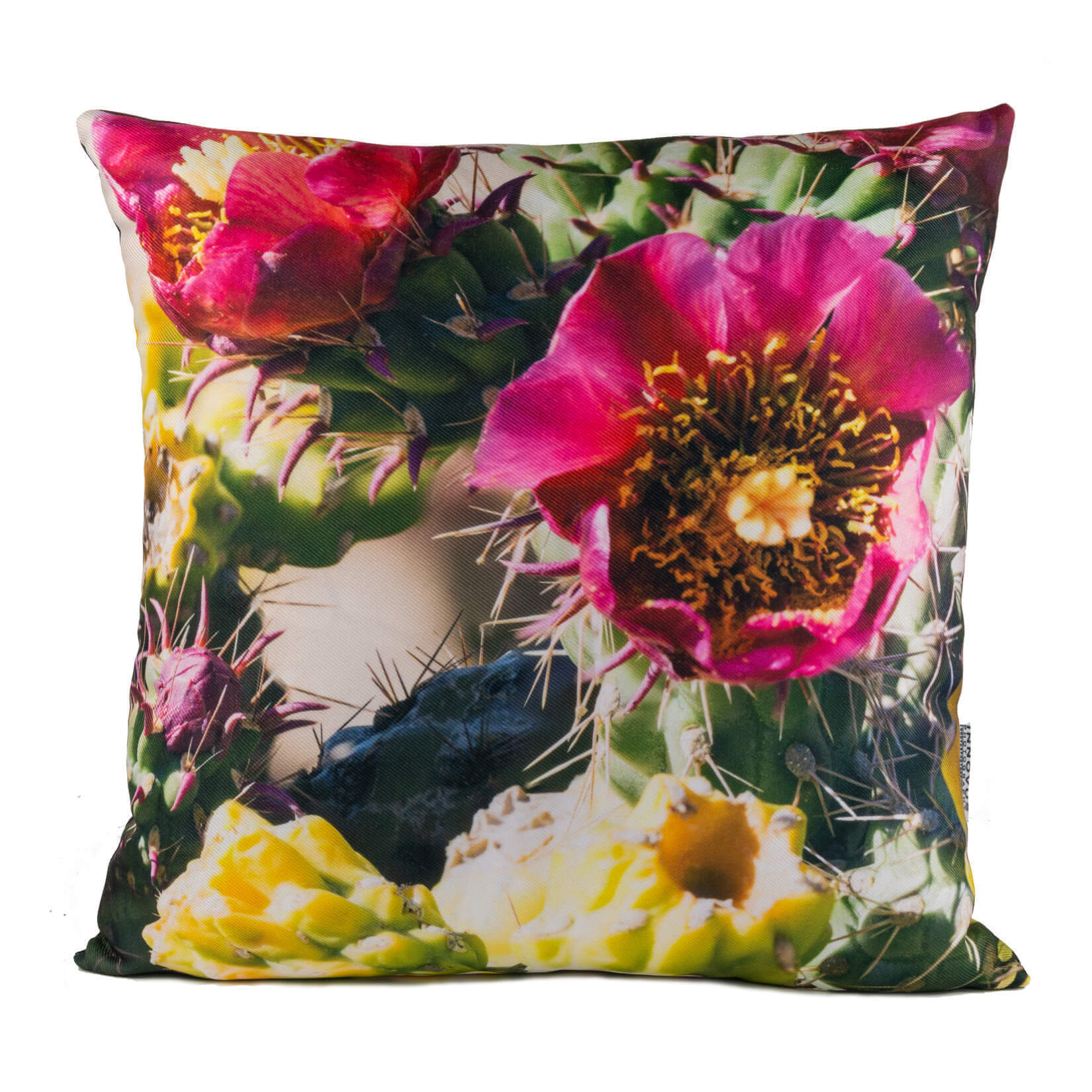 Pink Cactus Flower 14in Throw Pillow