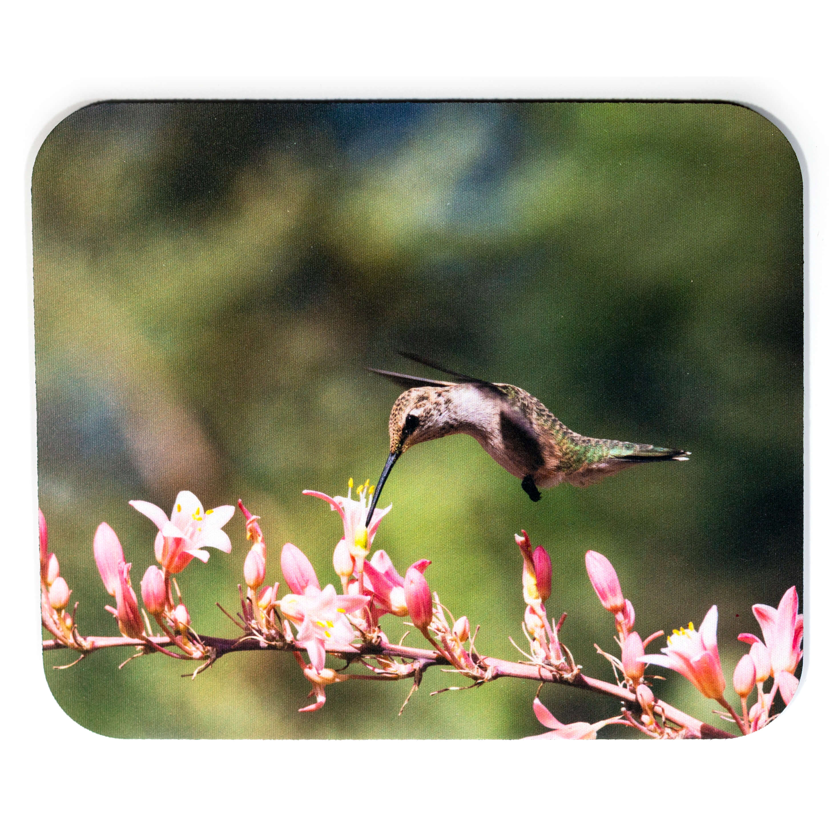 Pink Flower Hummingbird Mousepad