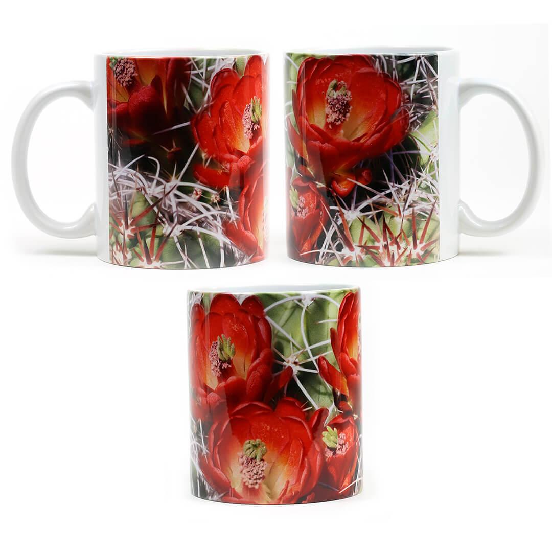 Red Flowering Cactus Mug